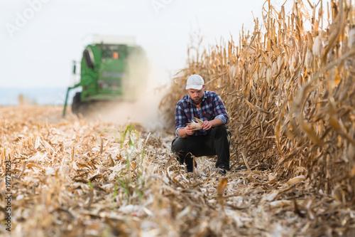Fotografía farmer in corn fields