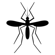 Vector Image Of A Mosquito Sil...