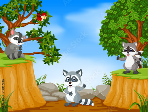 Raccoons with mountain cliff scene