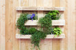 canvas print picture - Garten, Wandgarten, Palette, Holz