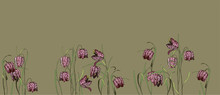 A Small Flower With A Chess Pattern Of Burgundy Color. Spring Flowering Fritillaria