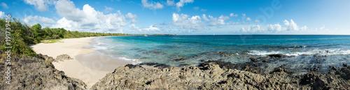 Carta da parati Panorama de la grande anse des Salines - Martinique