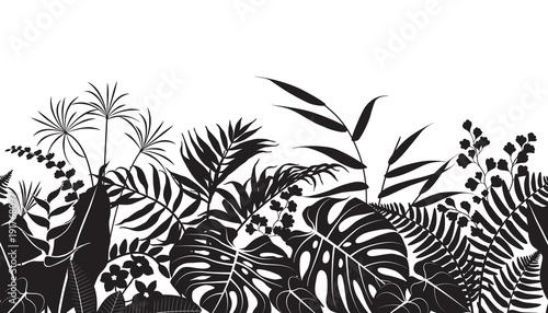 Wzór sylwetki tropikalnych roślin