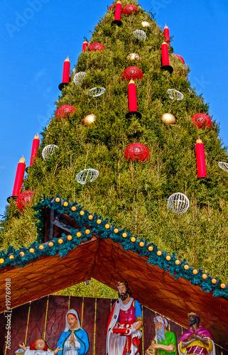 Dortmund Weihnachtsbaum Kaufen.Riesiger Weihnachtsbaum In Dortmund Am Hansaplatz Kaufen Sie