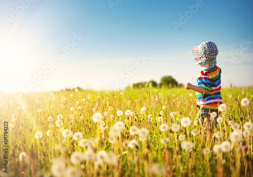 Fotomural  Baby boy standing in grass on the fieald with dandelions