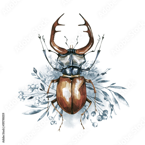 Fotografia Watercolor beetle with horns on a floral background