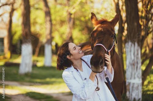 Fototapeta Veterinarian enjoying with a horse outdoors at ranch.  obraz
