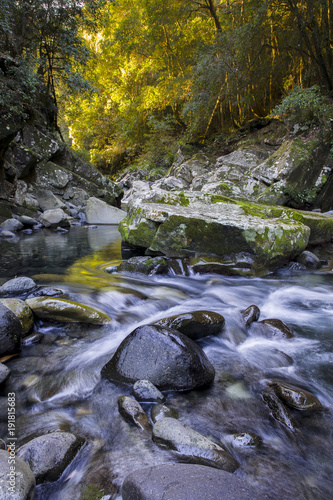 Williams River, Barrington Tops, NSW. Limited Edition Print. Poster