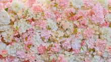 Flower Background. Backdrop We...