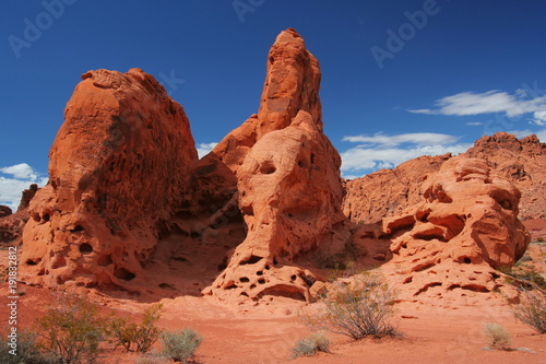 Poster Algérie Rock formation in Valley of Fire State Park in Nevada in the USA