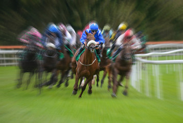 Lead racehorse and jockey zoom motion blur background