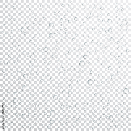 Fototapeta Vector Water drops on glass. Rain drops on transparent background