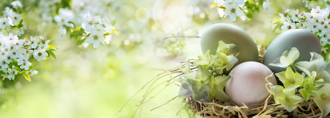 Easter eggs in spring