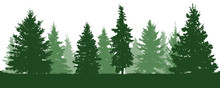 Forest Fir Trees Silhouette. C...