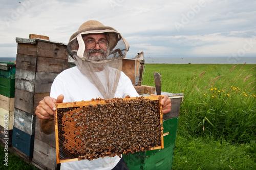 Happy beekeeper Canvas Print