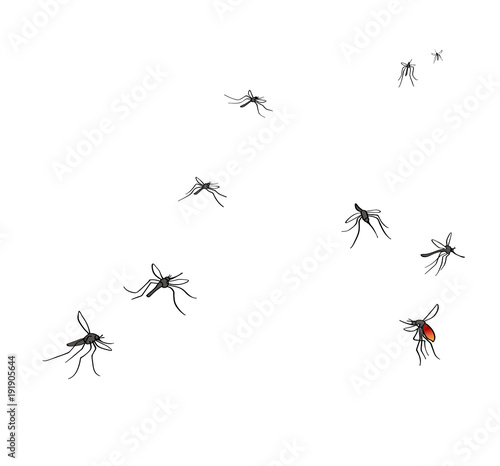 Photo A flock of flying mosquitoes