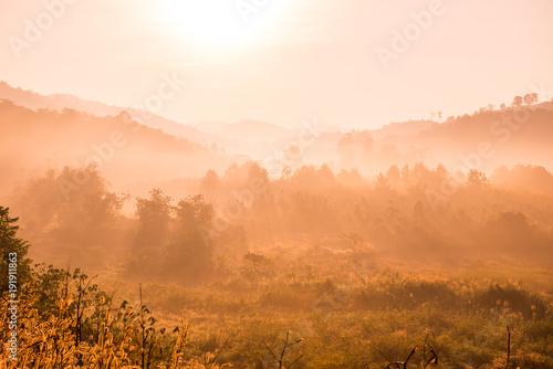 Photo sur Toile Morning Glory Beautiful Mountain View of Phu Langka National Park