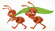 Two Cute Cartoon Ant Carry Gre...