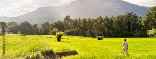 Foto  Adorable girl walking in rice field