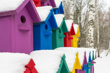 Colorful Birdhouses For The Bi...