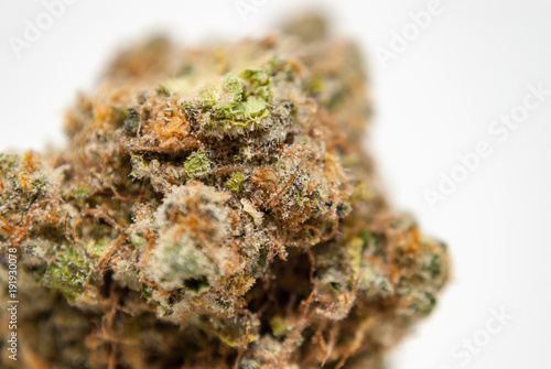 Foto auf Gartenposter Forest river Cannabis Nug - Strain: Blue Dream X White Dawg