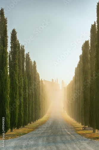 Poster Beige Tuscan landscape early morning