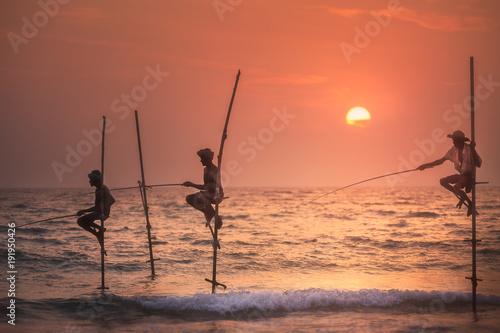 Fototapeta Traditional fishermen at the sunset, Sri Lanka.