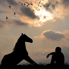 Silhouette Of Horse And Man Sitting On Grass Outdoor