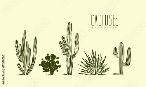Fotografía Stock vector set of hand drawn cactus