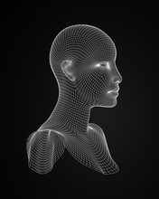 3d Head Wireframe Vector. Draw...