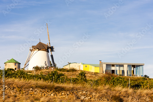 Tuinposter Molens windmill in Retz
