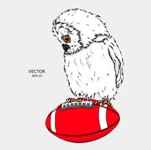Portrait Of An Owl On A Ball. ...