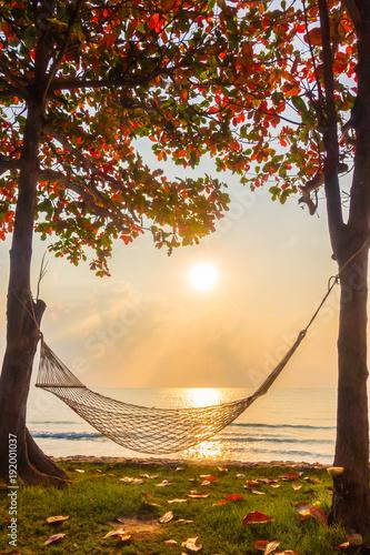 Photo  Hammock neary beach and sea on sunrise time