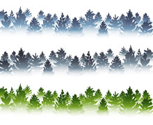 Set Of Seamless Borders With Coniferous Forest Sihouettes