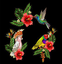 Tropical Birds Embroidery Patches With Flowers And Leaves. Vector Illustration. Hummingbird, Parrot.
