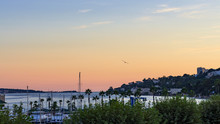 Panoramic Sunset Of A Coast City With A Seagull Flying Over The Small Harbor Of Golfe Juan, Côte D'azur