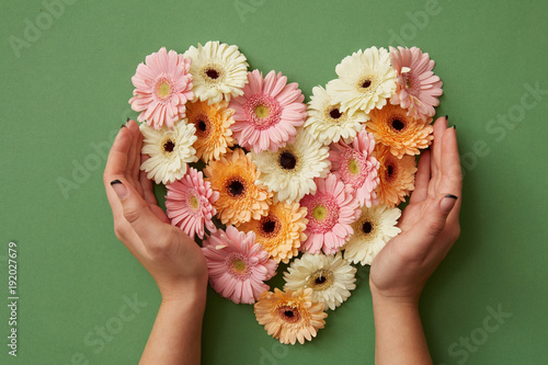 Keuken foto achterwand Gerbera Hands of girl holding a heart of gerbera flowers
