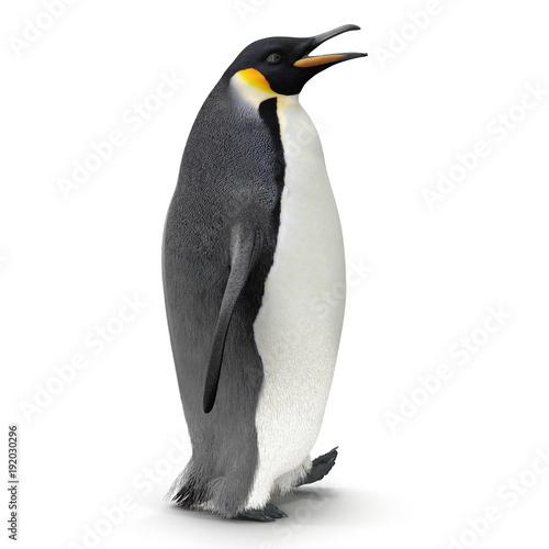 Papiers peints Pingouin King penguin isolated on white. 3D illustration