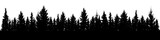Fototapeta Forest - Forest of Christmas fir trees silhouette. Coniferous spruce panorama. Park of evergreen wood. Vector on white background