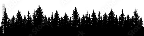 Photo sur Toile Noir Forest of Christmas fir trees silhouette. Coniferous spruce panorama. Park of evergreen wood. Vector on white background