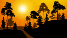 Forest Silhouette Of A Sunset. Park Road Trees. Vector Illustration