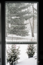 Winter Scene Through Window, Black And White.