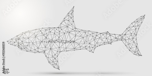 Cuadros en Lienzo Abstract shark consists of lines and triangles