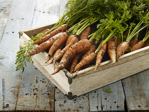 Aluminium Prints Food Close-up of carrots arranged in a wooden crate