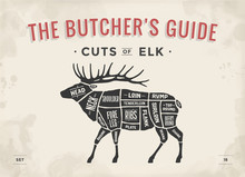 Cut Of Meat Set. Poster Butche...
