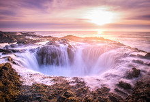 Thor's Well Lavender
