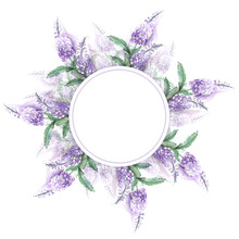 The Pattern Is A Round Frame Framed By Lavender Branches. Hand-Drawn Illustration
