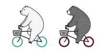Bear Vector Polar Bear Ride Bicycle Cycling Doodle Illustration Character Cartoon