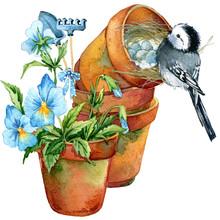 Bird And Spring Garden Waterco...