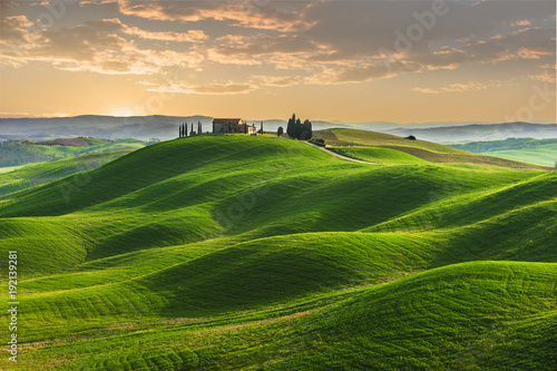 Acrylic Prints Hill Spring in the fields of Tuscany in the sunset